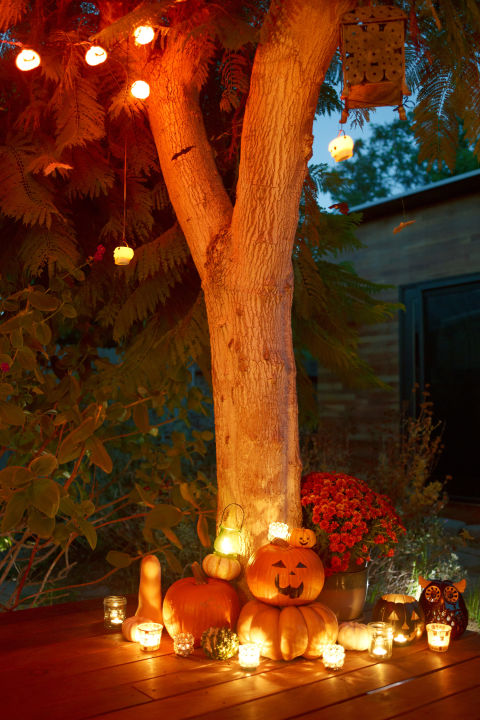 romantic-halloween-backyard